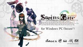 STEINS;GATE for Windows PC[Steam®]