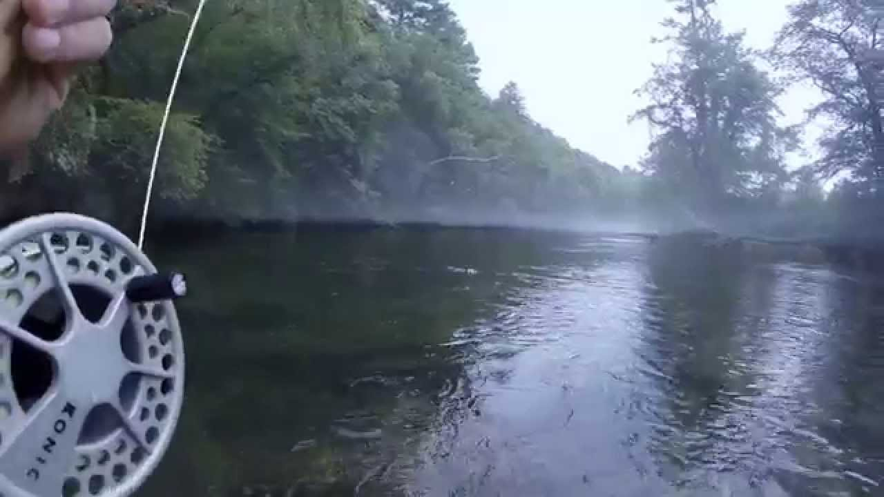 Toccoa river fly fishing youtube for Toccoa river fishing