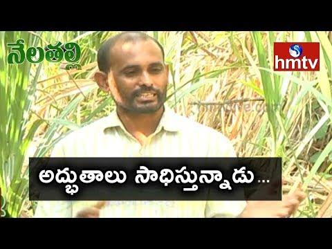 SugarCane Farming Success Story by Vikarabad Farmer   Nela Talli   Telugu News    hmtv