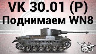 VK 30.01 (P) - Поднимаем WN8
