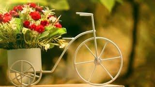 доставка квітів по Львову ціни недорого свіжі квіти львів(, 2015-02-24T12:52:05.000Z)