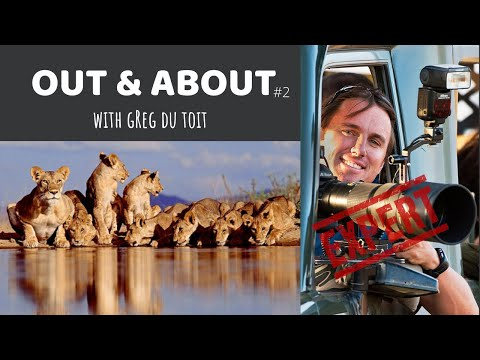 Out & About With Greg Du Toit - Interview With An Expert Wildlife Photographer | Episode 2