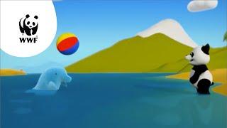 Kijk Pipapanda en de zwemwedstrijd filmpje