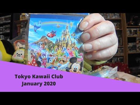 Tokyo kawaii club unboxing January 2020