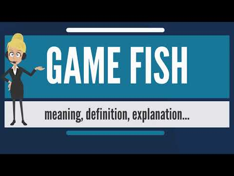 What Is GAME FISH? What Does GAME FISH Mean? GAME FISH Meaning, Definition & Explanation