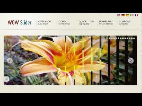 wow slider download