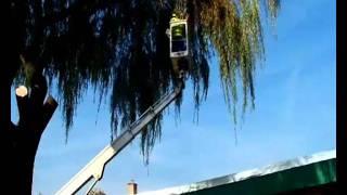 Zapobieganie spadaniu gałęzi i konarów na samochody osobowe.wmv