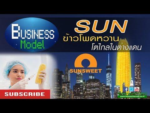 Business Model | SUN ข้าวโพดหวานโตไกลในต่างแดน #07/02/18