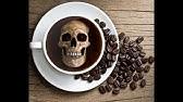 Статьи и 208 фотографий ubud sari coffee luwak agrotourism, с рейтингом 24 на. Москва, россия. Я впервые увидела вживую зверька мусанга, который ест кофейные зерна (копи-лювак), потом была дегустацию чая и кофе. В конце предложат купить понравившийся чай или кофе в их магазинчике.