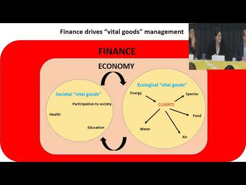 """How finance can help to manage """"vital goods"""" in the coming collapse?"""