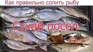 видео: Как правильно и вкусно солить рыбу СУХИМ ПОСОЛОМ. Уникальный рецепт вяленой тарани по простому!