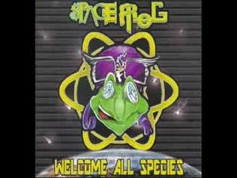 Space Frog Maschinenwelt