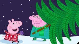Peppa Pig Nederlands Compilatie Nieuwe Afleveringen 🎄 Kerstboom Kopen 🎄 Tekenfilm | Peppa de Big