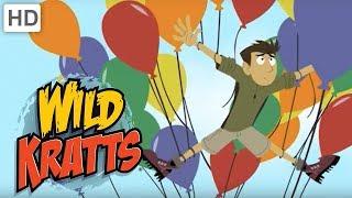 Wild Kratts 🎈 Balloons in the Wild | Kids Videos