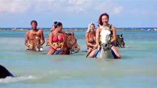 Plan Your Next Adventure | Beach Windz Travel & Events