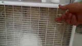 DIY Air Filtration
