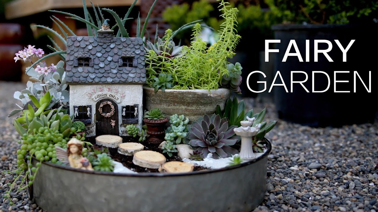 Succulent Fairy Garden   YouTube