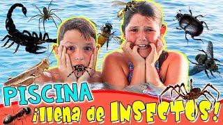 😱¡¡Nuestra PISCINA está LLENA de INSECTOS!! 🕷RETOS en la PISCINA con Los BICHOS más PELIGROSOS thumbnail