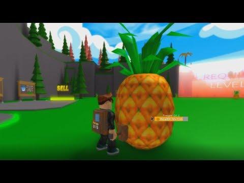 Roblox Velhote E Novote Andaram Pelo Campo Minado Perigoso Roblox Esmagando Frutas Gigantes Fruit Smash Simulator Youtube