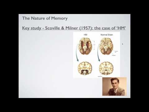 Biological Approach to Memory