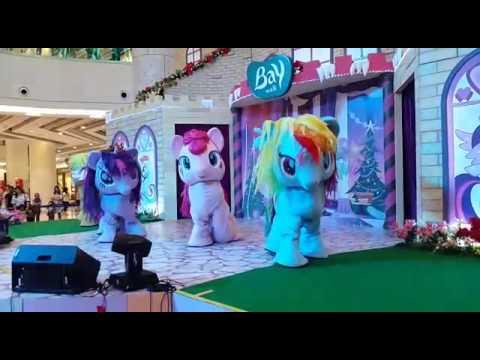 Kuda poni