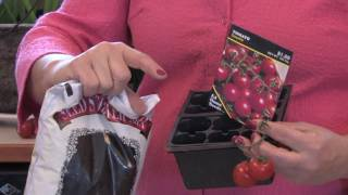 Tomatoes & Gardening Tips : How to Grow a Hanging Tomato Garden