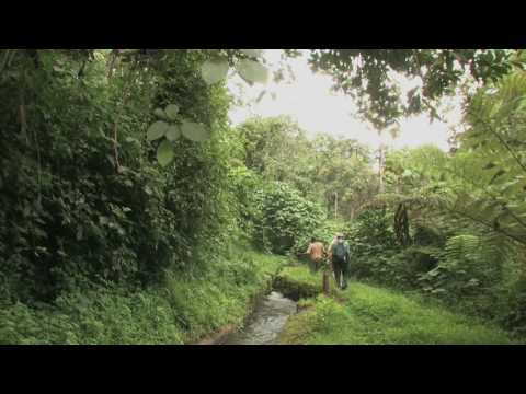 Mara River & Mau Forest -- by No Water No Life