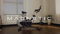 Sunny Health & Fitness SF-B1709 Belt Drive Magnetic Indoor Cycling Bike