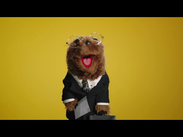 A Groundhog Day Message from Joe the Legal Weasel   The Muppets