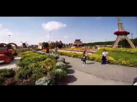 Tour operator In Dubai | UAE travel agency | Tourism companies in UAE