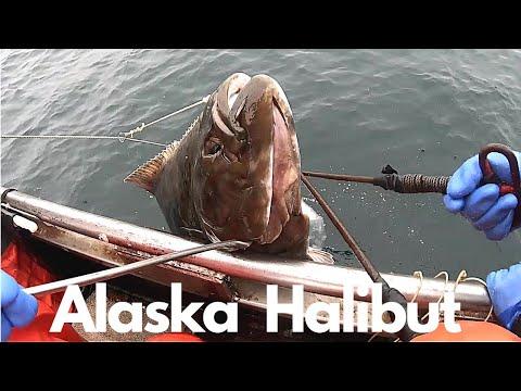 Alaska Halibut Fishing 2020 | Haul-Clean-Repeat