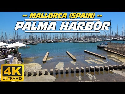 Palma harbor (Mallorca - Spain)