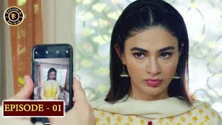 Beti Episode 1 - Top Pakistani Drama