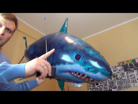 Летающая Акула на