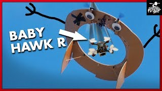 BabyHawk R - AIR GATE GAME | FLITE TEST