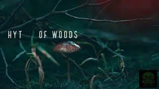 Sonic Brahma - Rhythm Of Woods (Forest)