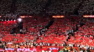 Волейбол. Чемпионат мира-2014. Польша. Финал. Польша - Бразилия