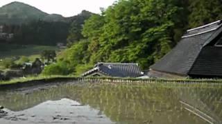 2011.5.14 兵庫県道r12~大阪府道r603~長谷の棚田~才ノ神峠~r12~...