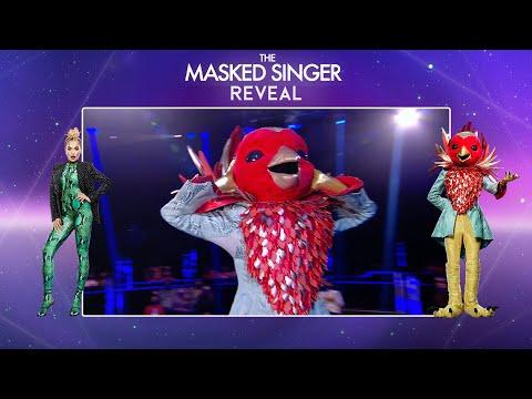 Robin is Unmasked! | Season 2 Final Reveal | The Masked Singer UK