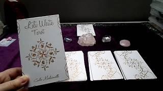 Deck review: The lili White tarot by Célia Melesville (english video)