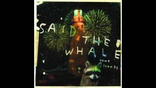 Watch Said The Whale Plans For The Future video