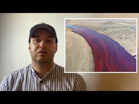 Власти запрещают вывозить пробы грунта и воды из Норильска.Норильск разлив.Норильск катастрофа