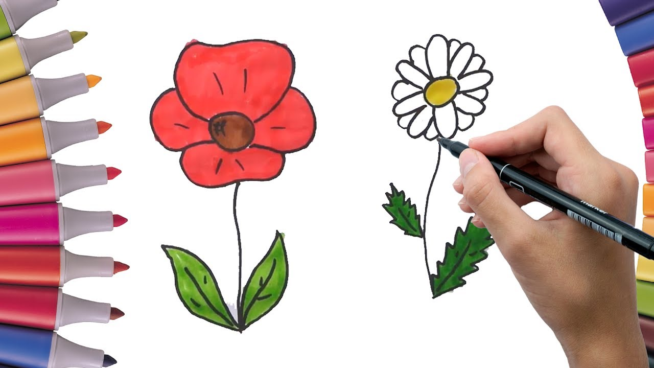 Amazing Poppy Flower Coloring Pages Sketch - Drawing Coloring ...