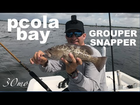 Catching Red Snapper & Gag Grouper In The Bay