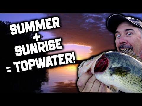Topwater Bass Fishing Summer Chug Bug Fishing Forward