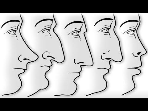 Tu nariz dice mucho de ti