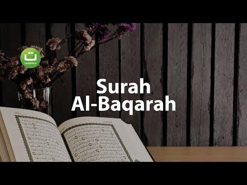 Juz 1 Surah Al Baqarah سورة البقرة - Abu Usamah ᴴᴰ