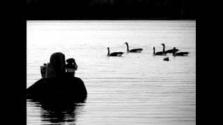 The Swan of Tuonela - Sibelius