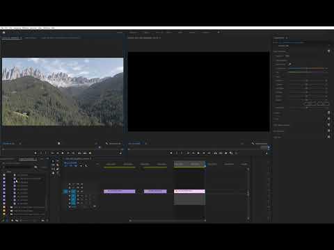 Adobe Premiere Pro 2020 Issue