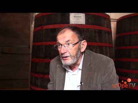 André Porcheret contre la candidature des Climats de Bourgogne à l'Unesco